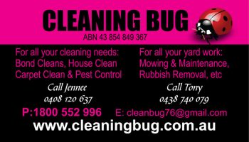 cleaning-bug-bc-fnt-_opt