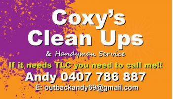 coxys-cleanups-_opt
