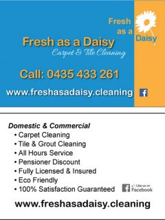 fresh-as-a-daisy-bcard-FINAL_opt